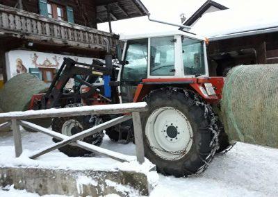 wienertoni-landwirtschaft-06
